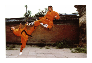 Shaolin Site_0