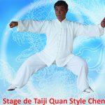 Stage Maître Wen 2018 copie11