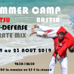 flyer_corse_laurent_rvb-karate-bushido-500x350