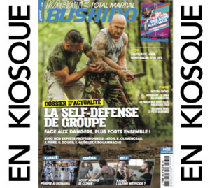 NewBANNIERE-EN-KIOSQUE-301x269